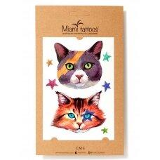 LAIKINŲ TATUIRUOČIŲ RINKINYS CATS